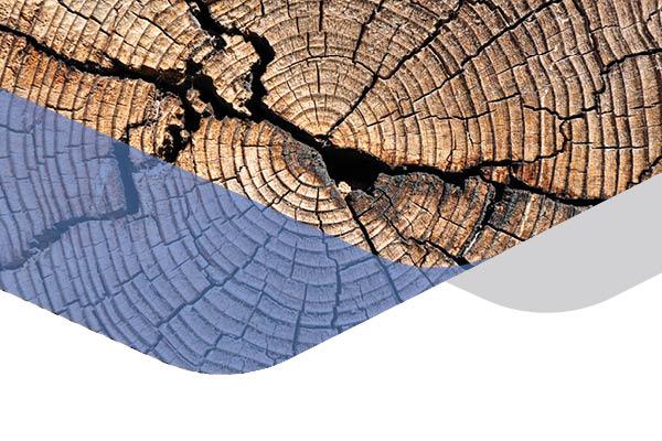 """Coloquio TECSA """"Dislocaciones del habitar: Una reflexión sobre la periferia"""""""